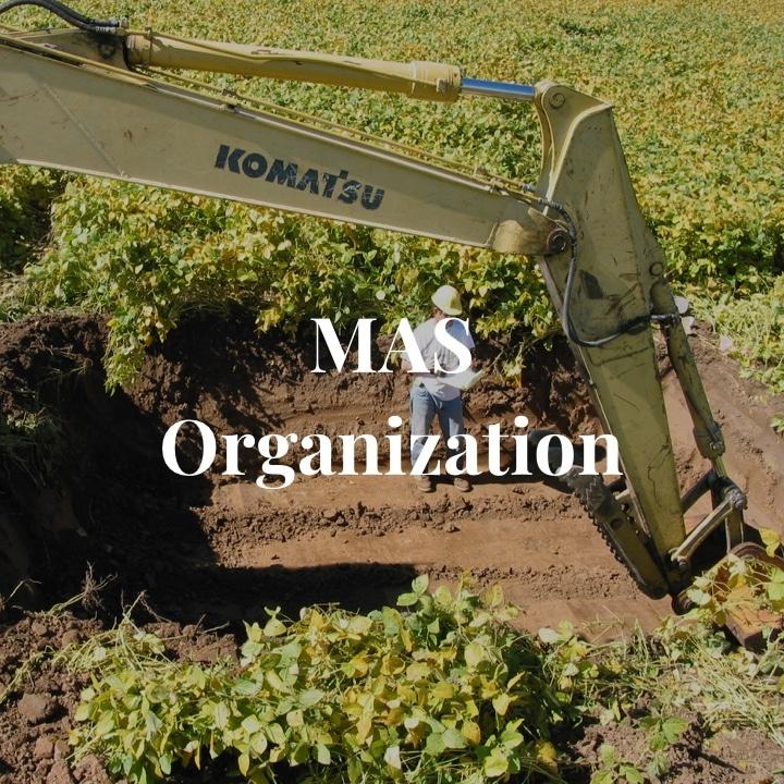 MAS Organization
